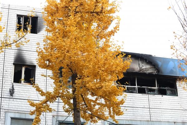 화재로 7명이 사망한 서울 종로구 국일고시원 3층의 불에 탄 창문 모습
