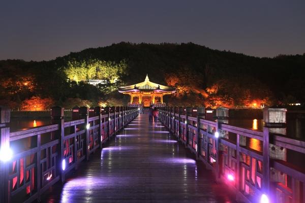 경북 안동시 상아동과 성곡동을 연결하는 나무다리 월영교의 야경 ⓒ김경호