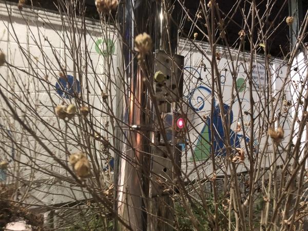 나무에 가려져 거의 보이지 않는 여성안심귀갓길의 비상벨 ⓒ여성신문