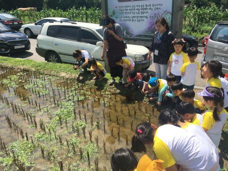 '어린이 자연체험교실' ⓒ서울시