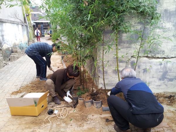 루치아의 뜰 골목길 조성 사업에서 박인규 대표(오른쪽 첫 번째)가 대나무를 심고 있다. ⓒ루치아의 뜰 제공