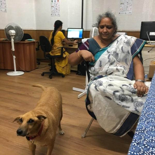 하시루 달라 대표인 날리니 쉐카르씨와 사무실에서 키우는 강아지. ©최형미