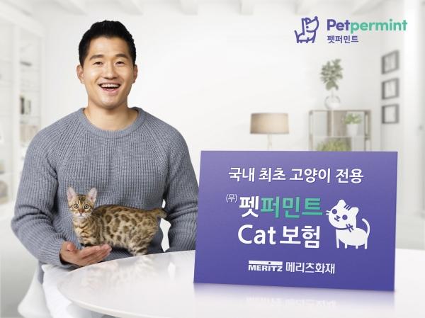 반려 고양이의 평생 의료비를 보장하는 장기 고양이보험이 출시된다. ⓒ뉴시스·여성신문