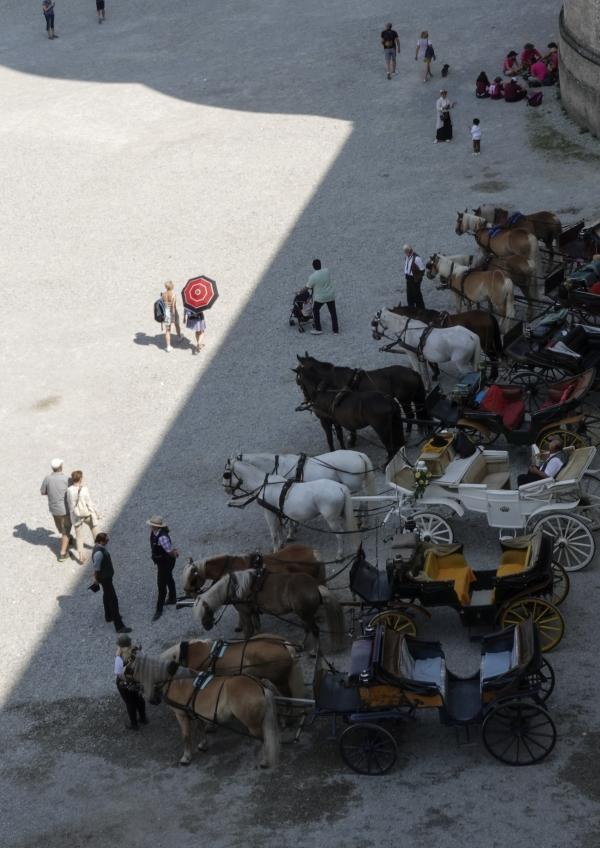 레지던스 궁전 뒤편에서 관광객을 기다리는 피아커들. 사진_조현주