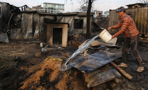 5일 오후 산불 피해가 큰 강원 속초시 장사동 장천마을의 주민이 볍씨에 붙은 불을 끄려고 물을 붓고 있다. ⓒ뉴시스·여성신문