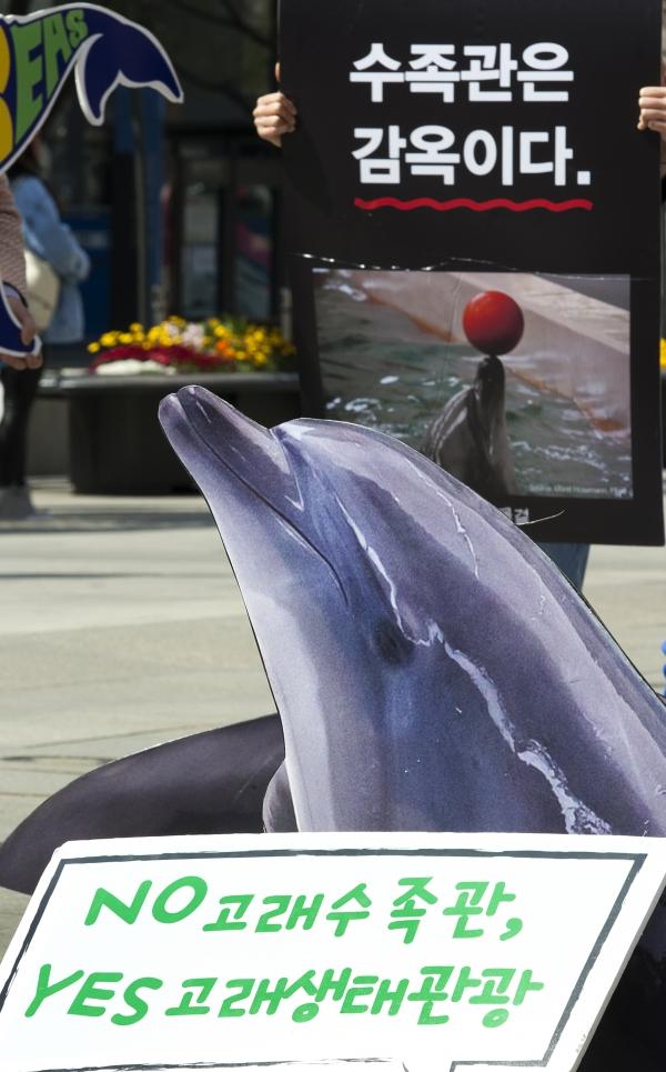 15일 서울 광화문 광장에서 열린 '국내 사육중인 벨루가 야생 방류 촉구' 캠페인에 고래모형이 전시돼 있다.