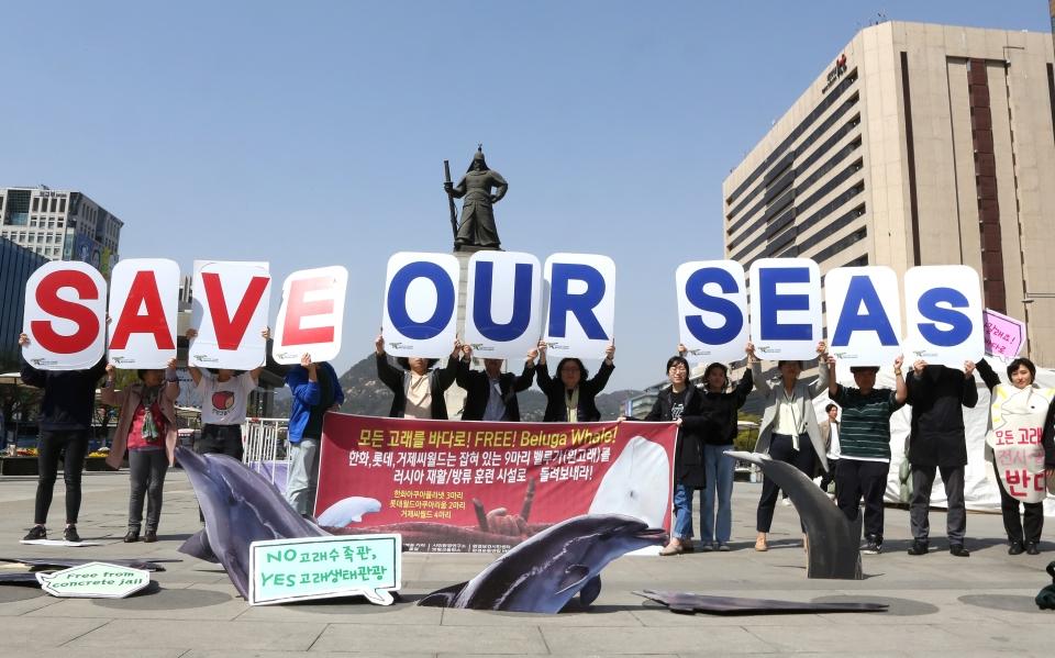 15일 서울 광화문 광장에서 '국내 사육중인 벨루가 야생 방류 촉구' 캠페인이 열렸다.