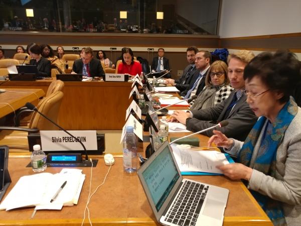 미국 뉴욕에서 열리는 '제10차 유엔(UN) 개방형 고령화실무그룹 회의'에 참석한 최영애 인권위 위원장. ⓒ인권위