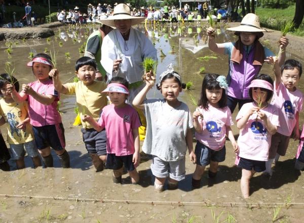 21일 서울 강남구 양재천 벼농사 학습장 열린 '전통 모내기 체험'에 참여한 어린이들이 모를 들고 있다.