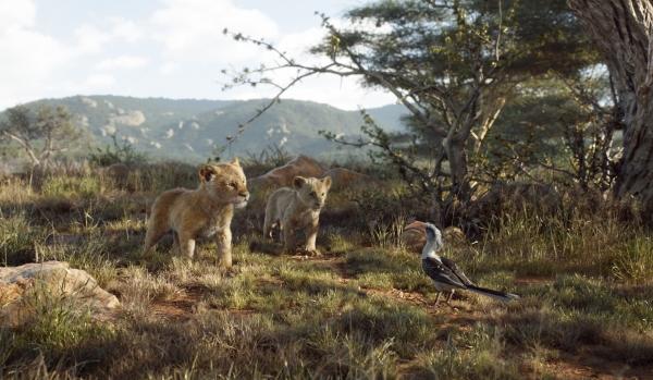 (왼쪽부터) '라이온 킹'의 사자 심바와 날라, 앵무새 자주. ⓒ월트디즈니컴퍼니코리아
