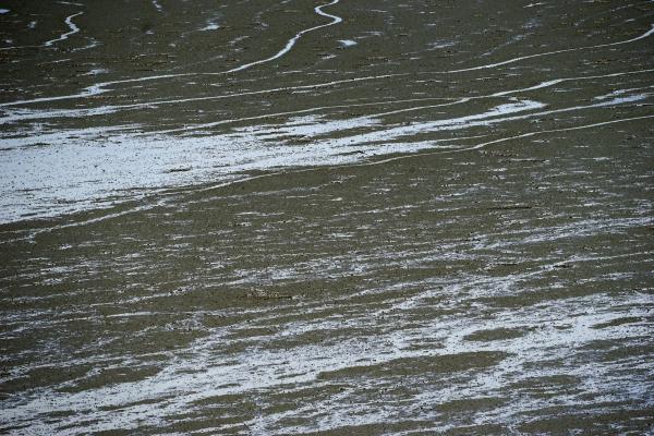 빛을 받아 추상 그림을 그린듯한 무의도 갯벌 물줄기들. 사진_조현주