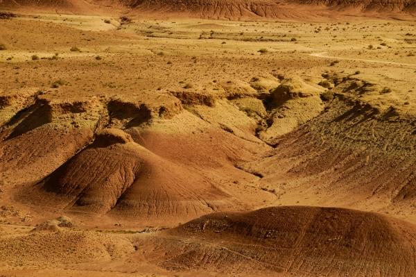 우주의 다른 행성에 온 것처럼 혹 달린 봉우리들이 이국적이다. 사진_조현주<br>
