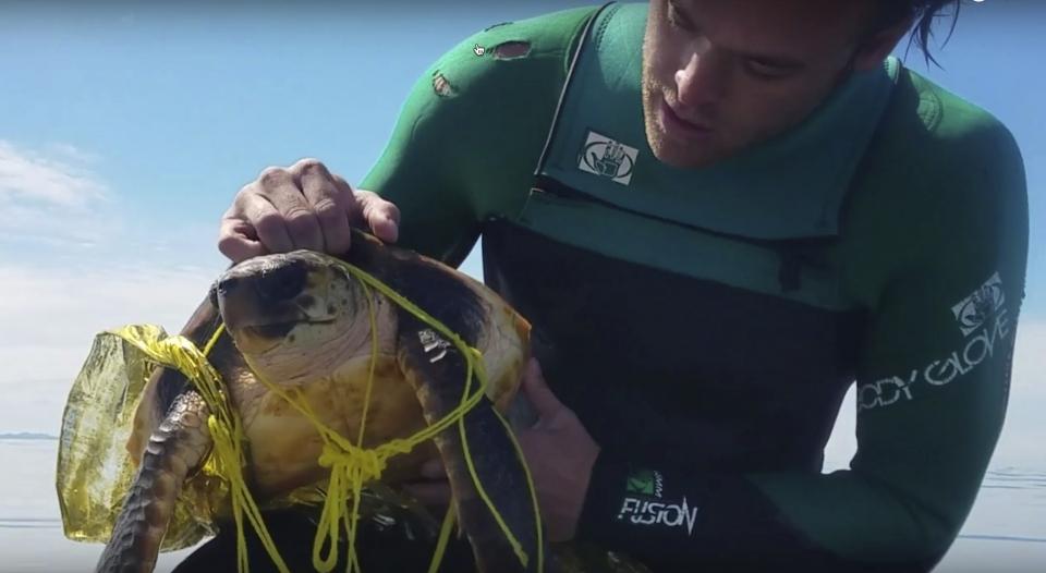 지난 2017년 서던캘리포니아 해변에서 발견된 바다 거북. 온몸에 터진 풍선 잔해로 제대로 움직이지 못해 발견한 남성이 직접 풀어주어야 했다. ⓒ유튜브캡처