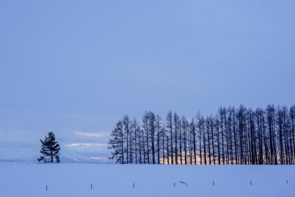 마일드세븐 광고 촬영으로 유명해진 언덕에 아침 해가 서서히 떠오른다. 사진_조현주