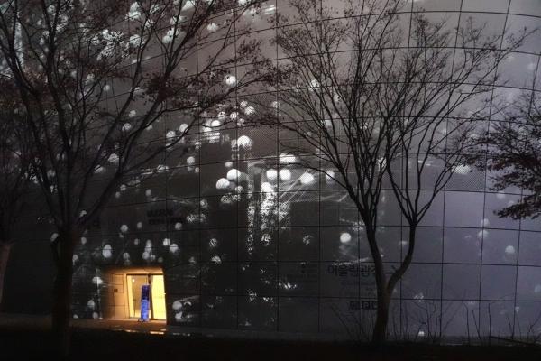 흑백 영상과 어우러진 나무들 사이에 노란빛 켜진 문이 외롭게 있다.  사진_조현주