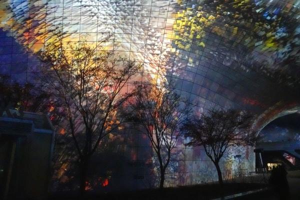 DDP 캔버스에 빛이 폭발하고 나무가지들이 늘어선 풍경이 신비롭다. 사진_조현주