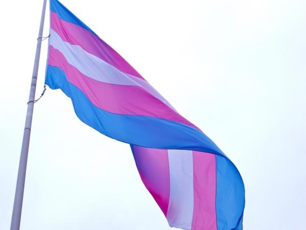 트랜스젠더 정체성을 '정신 및 행동 장애'로 분류했던 WHO가 30년 만에 이를 모두 삭제했다. 사진은 트랜스젠더의 권리를 상징하는 깃발(Transgender Pride flag). ⓒFlickr