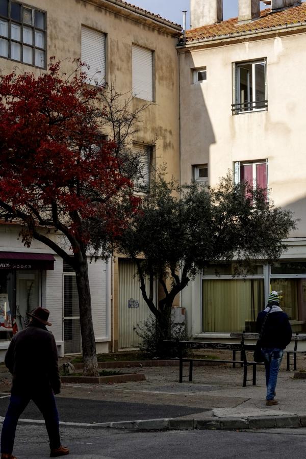 빛이 드리운 건물 앞 두 나무 사이로 같은 색깔 모자를 쓴 사람들이 스쳐 지나간다. 사진_조현주