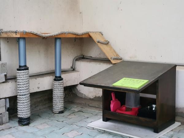 노원구에 설치된 길냥이 급식소