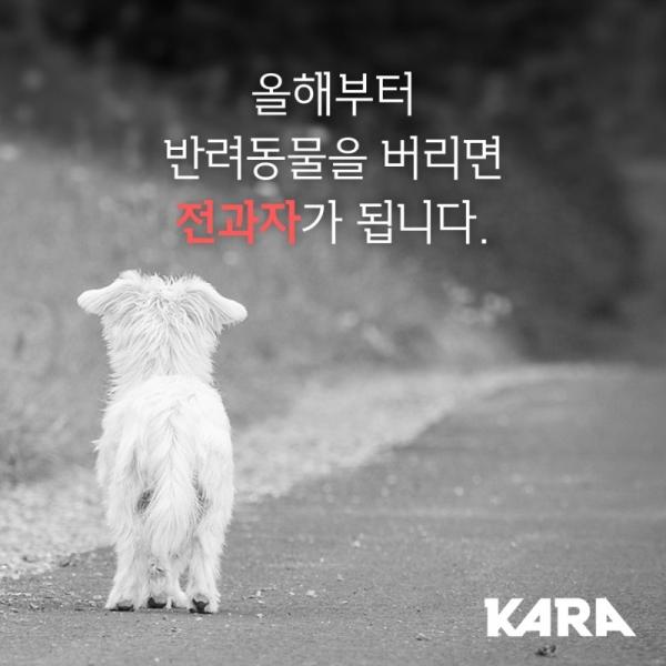 """""""반려동물 버리면 전과자 됩니다"""" ⓒ동물권행동 카라"""