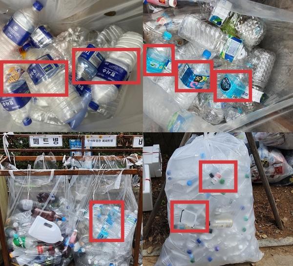서울 공동주택 투명페트병 분리배출함에 다른 쓰레기들이 섞여 있다. 라벨, 요구르트병, 치킨무 용기 등은 투명페트병에 해당하지 않는다. ⓒ여성신문<br>