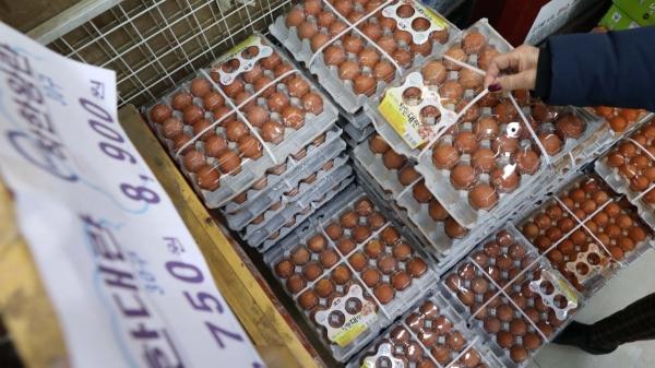18일 오전 서울 시내의 한 전통시장에서 한 시민이 달걀을 살펴보고 있다. ⓒ뉴시스