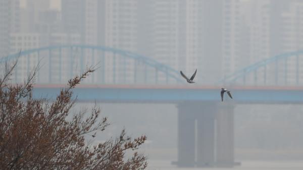 서울 이촌한강공원 ⓒ뉴시스