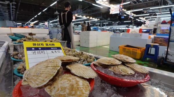 대구 북구 매천동 수산물도매시장에 일본산 가리비가 진열되어 있다. ⓒ뉴시스