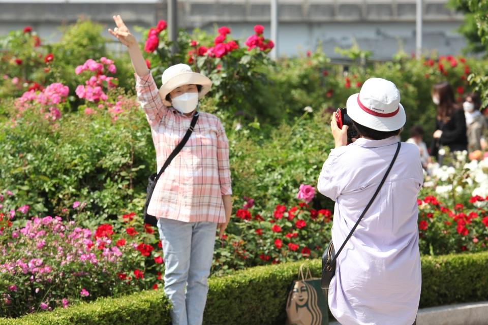 18일 서울 중랑구 장미공원에서 시민들은 기념촬영을 하고 있다. ⓒ홍수형 기자