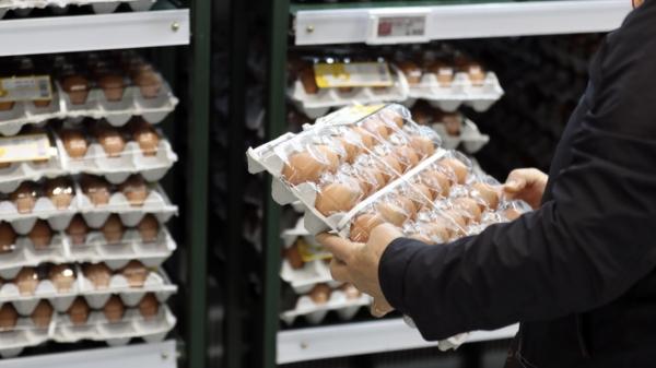 서울 한 마트의 달걀 코너 ⓒ뉴시스