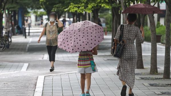 우산을 쓴 시민들 ⓒ뉴시스