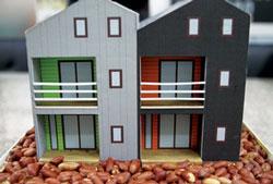 땅콩집 모형
