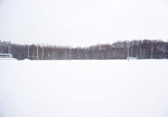 삿포로의 한 공터. 소복하게 쌓인 흰 눈과 갈색 나무숲이 어우러져 절경을 이룬다. ⓒ민원석