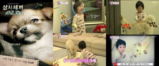 최근 예능에 등장하며 누리꾼에게 많은 사랑을 받는 강아지 산체와 새봄이
