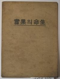 김명순의 첫 번째 창작집 『생명의 과실』 표지.