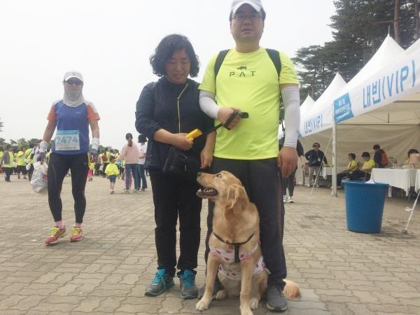 반려견 초롱이와 함께 마라톤에 참가한 50대 부부. ⓒ강푸름 기자