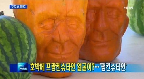 펌킨슈타인 ⓒMBN 방송 캡쳐