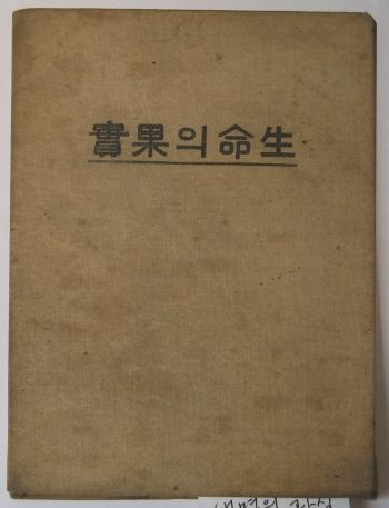 김명순의 첫 번째 창작집, 『생명의 과실』 표지