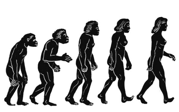 『인류의 기원』 10쇄에 실린 삽화. 인류 진화의 모습이 남성이 아닌 여성으로 묘사했다. 토끼도둑 ⓒ (주)사이언스북스, 2015
