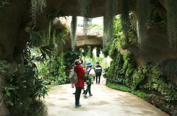 서울식물원 식물문화센터 내 온실을 관람객들이 둘러보고 있다.