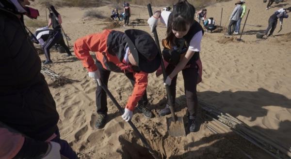 강태선 블랙야크강태선나눔재단 이사장이 중국 쿠부치 사막에서 함께 나무를 심고 있다. ⓒ블랙야크