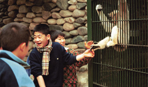 Children at Seoul Grand Park Zoo patting the legs of a long-arm monkey