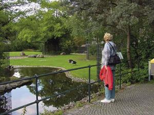 Zoo at Berlin Grand Park (photograph courtesy of Ha Ho, Green Korea United)