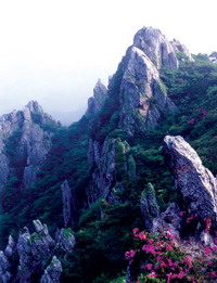 "Mt. Dharma is sometimes referred to as the ""Diamond Mountain of Haenam"" due to its breathtaking beauty."